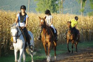 Horseback Riding In Trilj